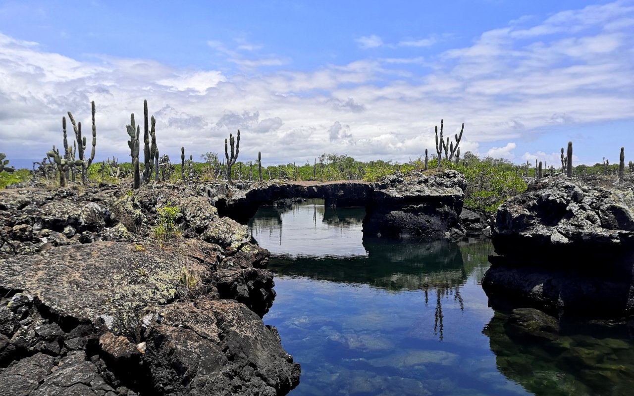 tuneles-galapagos