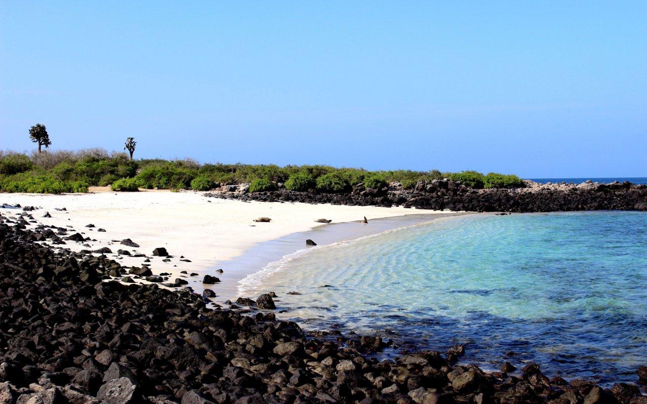 ile-santafé-galapagos