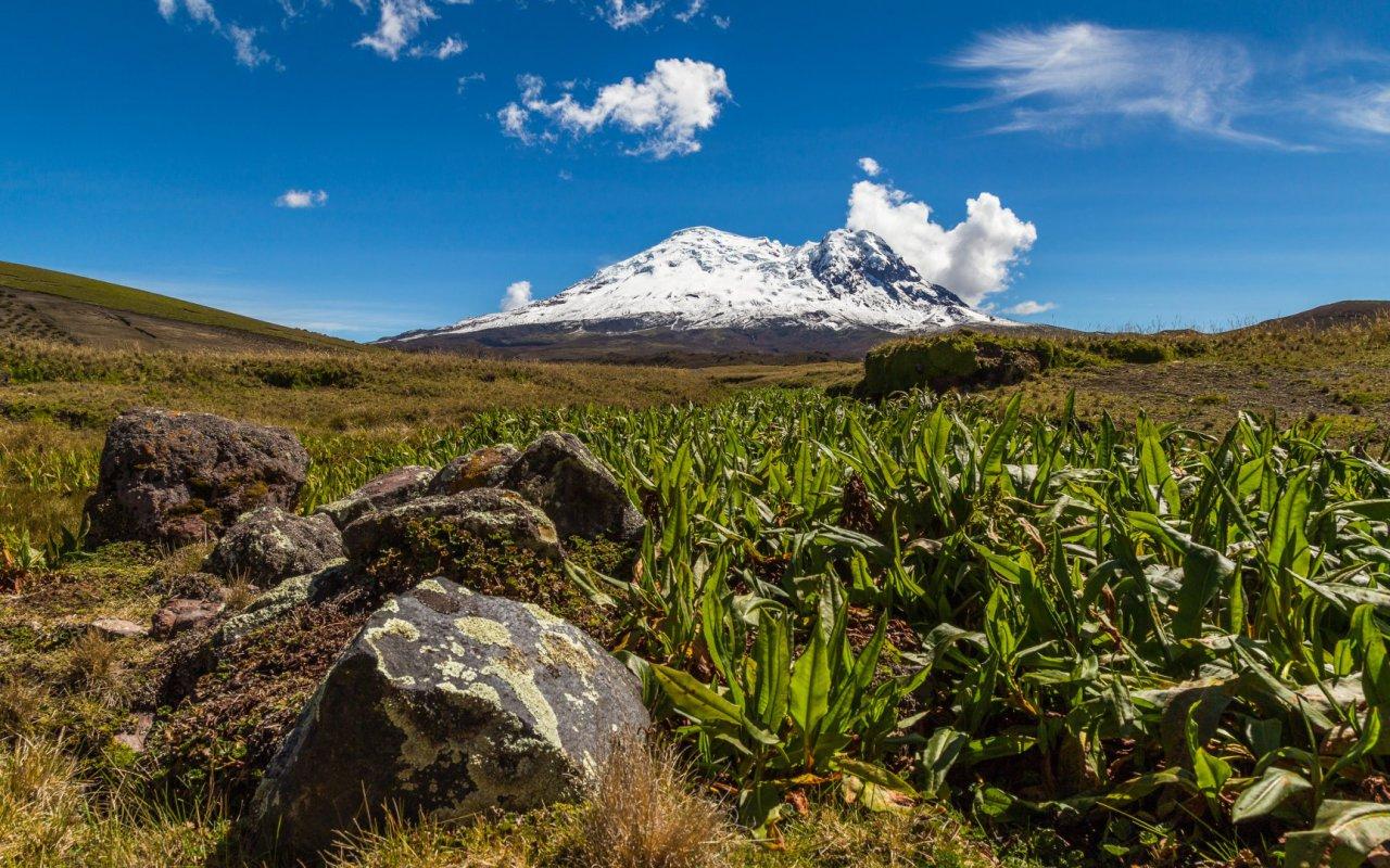Volcan Antisana en Equateur