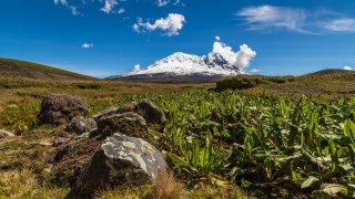 La richesse des réserves écologiques Antisana et Cayambe-Coca