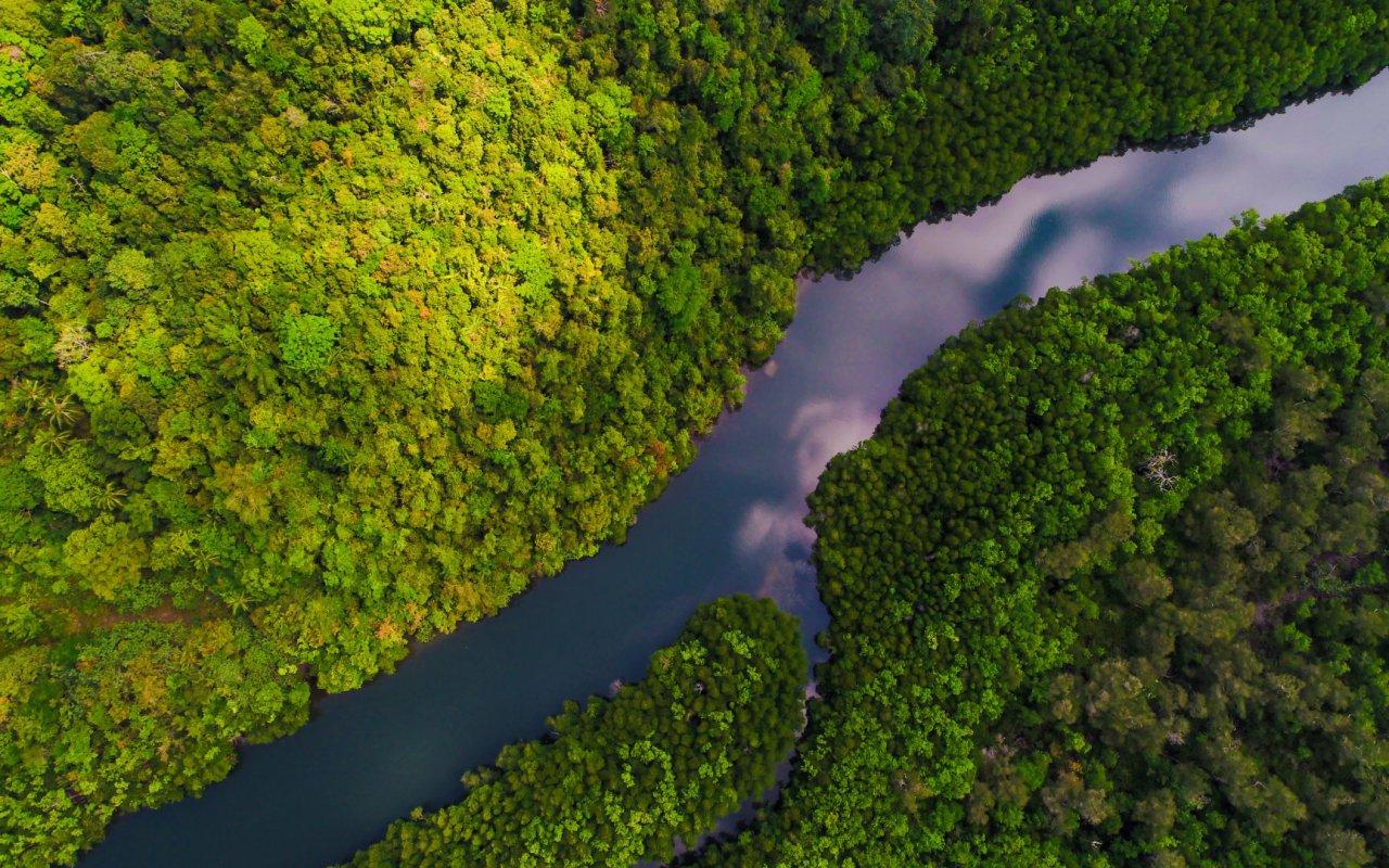 Amazonie - voyage equateur