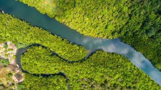 L'Amazonie en Equateur, el Oriente