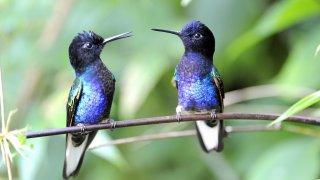 voyage equateur entre amis - terra ecuador