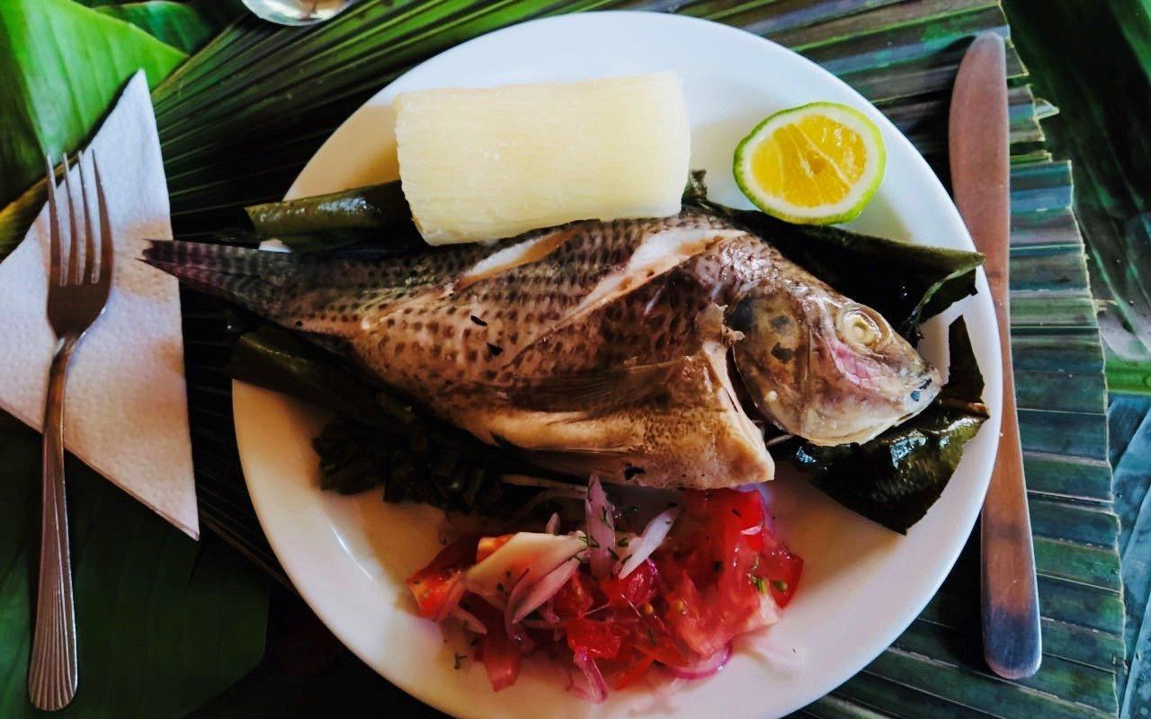 amazonie-fish-tilapia