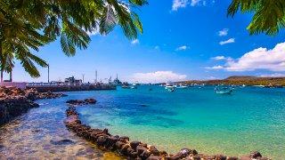 Croisière en catamaran de luxe à la découverte des Galapagos