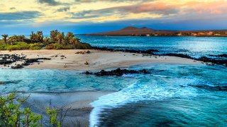 Découvrez les merveilles des Îles Galapagos lors d'une croisière en catamaran