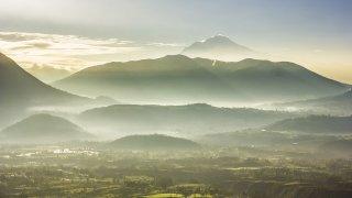 Trek dans les Andes du nord et sa forêt millénaire