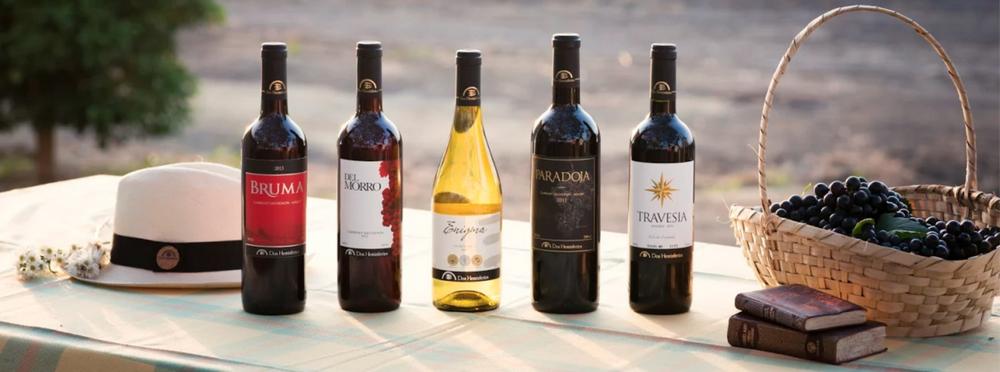 bouteilles-vin-equateur