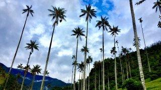 incontournables equateur et colombie - terra ecuador