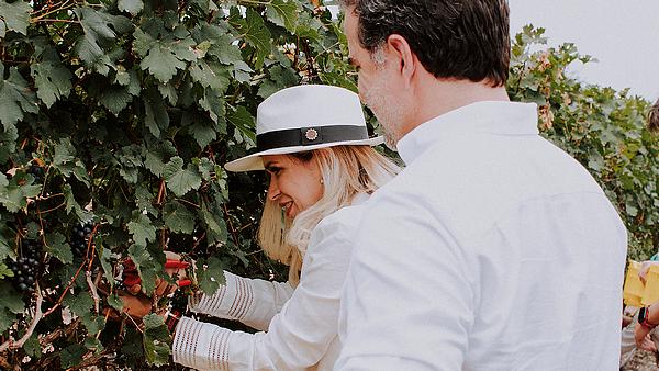 vignoble-equateur-vin