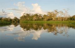 faune et flore en equateur