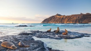 san cristobal archipel galapagos